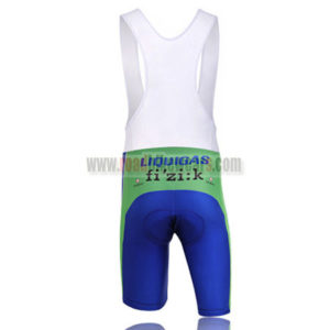 2010 LIQUIGAS Riding Bib Shorts Green Blue